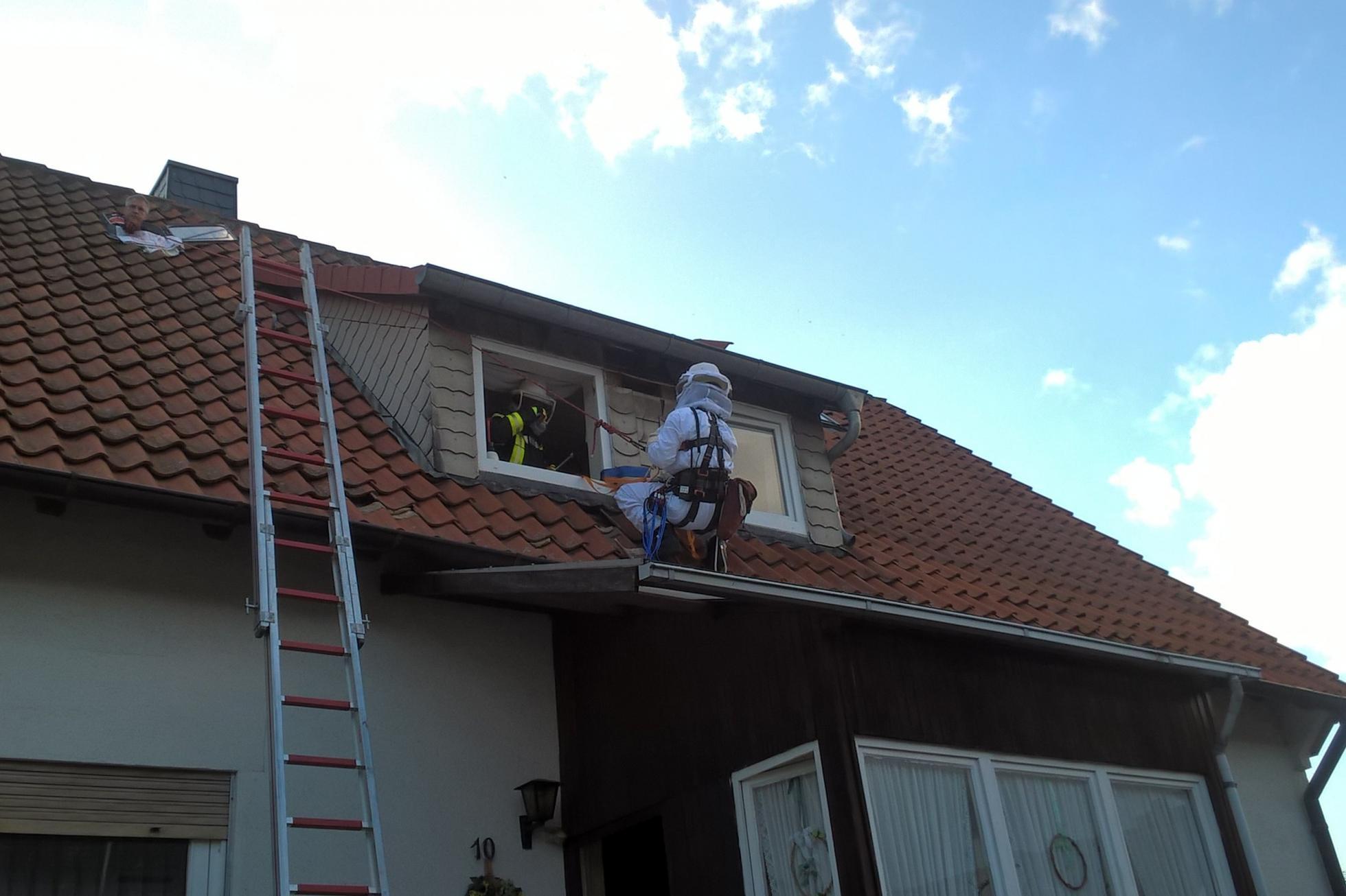 Prächtig Wespennest an Dach | Ortsfeuerwehr Hohenbostel &RV_55